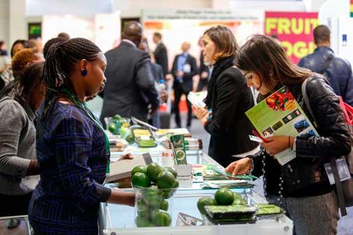 Solicite una reunión con PARTIDA en Fruit Logistica – Berlin