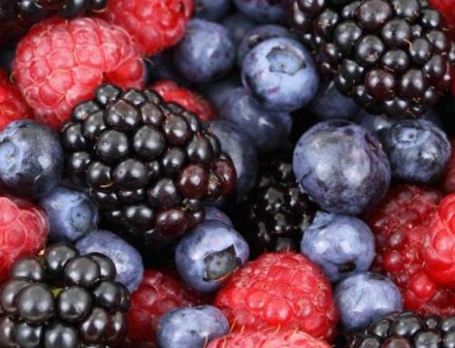 Andalucía bate récord de exportaciones en frutas y hortalizas